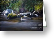 Quite Greeting Cards - Stoney Creek Greeting Card by Karen Lewis