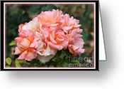 Daughter Gift Greeting Cards - Stop and Smell the Roses Greeting Card by Carol Groenen
