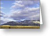 Winter Photos Greeting Cards - Storm Infusion Greeting Card by Andrea Hazel Ihlefeld