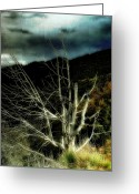 Mountains New Mexico Greeting Cards - Storm over the Jemez Mountains Greeting Card by Ellen Lacey