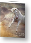 White White Horse Digital Art Greeting Cards - Stormy Greeting Card by Melinda Hughes-Berland