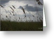 Sea Oats Digital Art Greeting Cards - Stormy View from the Dunes Greeting Card by Suzanne Gaff