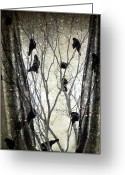 Otherworldly Greeting Cards - Stormy Winter Window Greeting Card by Gothicolors With Crows