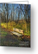 Empty Park Bench Greeting Cards - Storybook Bench Greeting Card by Pamela Baker