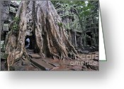 Fig Tree Greeting Cards - Strangler fig tree roots covering temple Greeting Card by Sami Sarkis