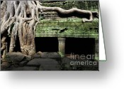 Fig Tree Greeting Cards - Strangler fig tree roots on temple Greeting Card by Sami Sarkis
