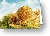 Outdoor Still Life Greeting Cards - Straw hat on grass with blue sky  Greeting Card by Sandra Cunningham