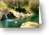 Wall Pictures Greeting Cards - Stream Greeting Card by Athala Carole Bruckner