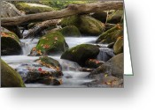 Rushign Water Greeting Cards - Stream of Thought Greeting Card by Charles Warren