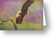 Eagle In Flight Greeting Cards - Strength and Courage Greeting Card by Deborah Benoit