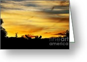 Yellow And Red Greeting Cards - Stripey Sunset Silhouette Greeting Card by Kaye Menner