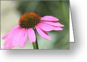 Flower Still Life Prints Greeting Cards - Strong Presence Greeting Card by Barbara S Nickerson