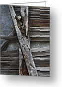 Rotted Greeting Cards - Stud and Lath Greeting Card by Murray Bloom