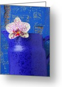 Vases Greeting Cards - Study In Blue Greeting Card by Garry Gay