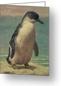 Marks Greeting Cards - Study of a Penguin Greeting Card by Henry Stacey Marks