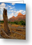 Zion National Park Greeting Cards - Stumped at Zion Greeting Card by Peter Tellone