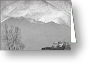 Bare Trees Greeting Cards - Stupa and Trees Greeting Card by Hitendra Sinkar
