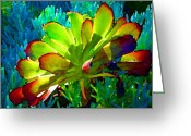 Cactus Flower Digital Art Greeting Cards - Succulent Backlit on Blue 1 Greeting Card by Amy Vangsgard