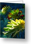 Cactus Flower Digital Art Greeting Cards - Succulents Backlite on Blue 3 Greeting Card by Amy Vangsgard