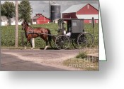 Amish Greeting Cards - Such grace - such serenity Greeting Card by David Bearden