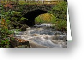 Bridge Greeting Cards - Sudbury River Greeting Card by Juergen Roth