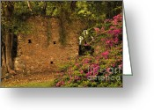 Cindy Longhini Greeting Cards - Sugar Mill of the Past in St. Lucia Greeting Card by Cindy Lee Longhini