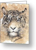 Scottsdale Art League Greeting Cards - Sumatra Greeting Card by Debra Jones