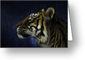 Cat Profile Greeting Cards - Sumatran tiger profile Greeting Card by Sheila Smart