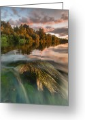 Hour Greeting Cards - Summer afternoon Greeting Card by Davorin Mance