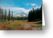 Trillium Lake Greeting Cards - Summer At Mt. Hood In Oregon Greeting Card by Athena Mckinzie