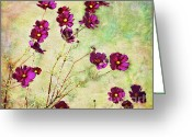 Swaying Greeting Cards - Summer Cosmos Greeting Card by Susan Isakson
