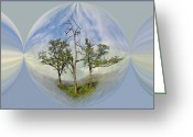 Fisheye Greeting Cards - Summer Dreams Greeting Card by Debra and Dave Vanderlaan