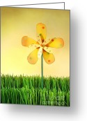 Fun Greeting Cards - Summer fun in the grass Greeting Card by Sandra Cunningham