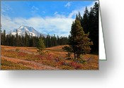 Trillium Lake Greeting Cards - Summer On Mt. Hood Greeting Card by Athena Mckinzie
