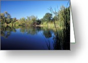 Landscapes Framed Prints Greeting Cards - Summertime Reflections Greeting Card by Kathy Yates