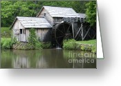 Most Photographed Photo Greeting Cards - Summertime Greeting Card by Shannon Slaydon