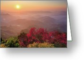 Layered Greeting Cards - Sun Burst, Cherry Blossoms And Mountain Layers Greeting Card by Samyaoo