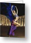Belly Dance Greeting Cards - Sun Court Dancer Greeting Card by Richard Young