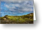 Sand Fences Photo Greeting Cards - Sun Dance Greeting Card by Bill  Wakeley