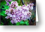 Lit Greeting Cards - Sun Lit Lilac The Sweet Sign Of Spring Greeting Card by Andee Photography
