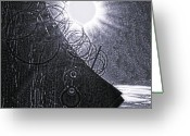Delaware River Greeting Cards - Sun over Barbed Wire Greeting Card by Bill Cannon