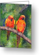 Lovebird Painting Greeting Cards - Sun Parakeets Greeting Card by Arline Wagner