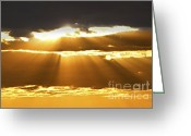 Setting Greeting Cards - Sun rays at sunset sky Greeting Card by Elena Elisseeva