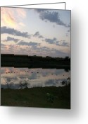 Lakes Pastels Greeting Cards - Sun Rise Greeting Card by Roy Penny