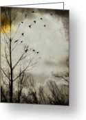 Passerines Greeting Cards - Sun Splash Greeting Card by Gothicolors With Crows