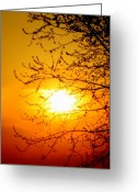 Thoughtful Greeting Cards - Sun Sweet Greeting Card by Julie Lueders 