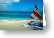 Beach Framed Prints Greeting Cards - Sunfish on the Beach Greeting Card by Kathy Yates