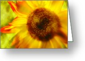 Janie Greeting Cards - Sunflower-a-Blaze Greeting Card by Janie Johnson