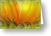 Karen Conine Greeting Cards - Sunflower Abloom Greeting Card by Karen Conine