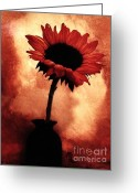Digitalized Digital Art Greeting Cards - Sunflower All Aglow Greeting Card by Marsha Heiken